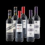 Spanien-Wein-Paket von Silkes Weinkeller
