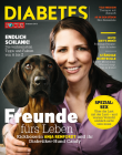 FOCUS-DIABETES Sommer 2013